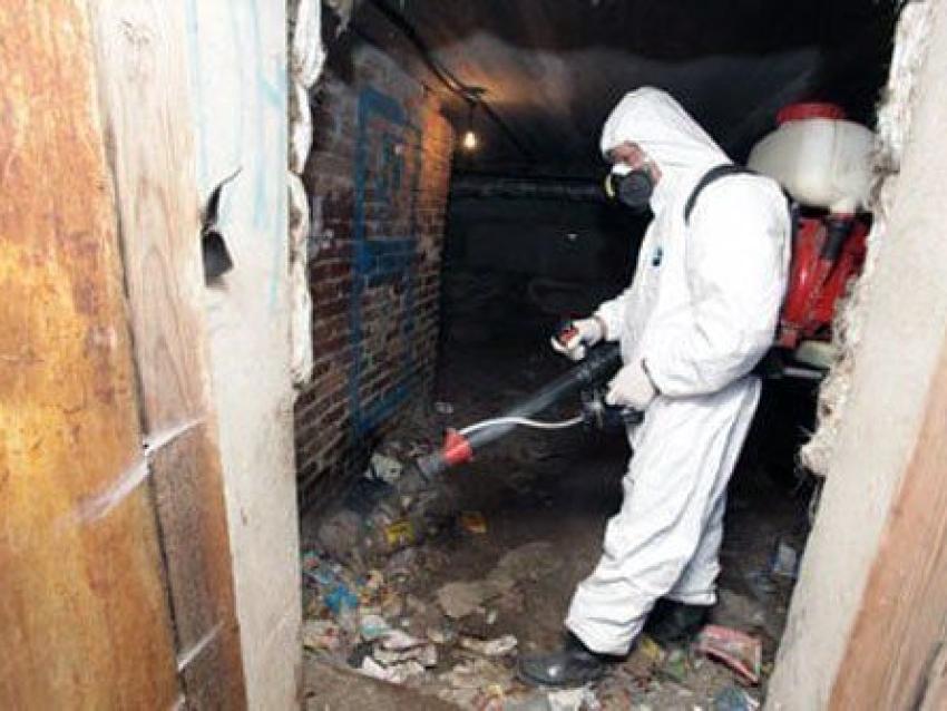 Госинспекция Забайкалья обязала управляющую компанию провести дезинсекцию многоквартирного дома