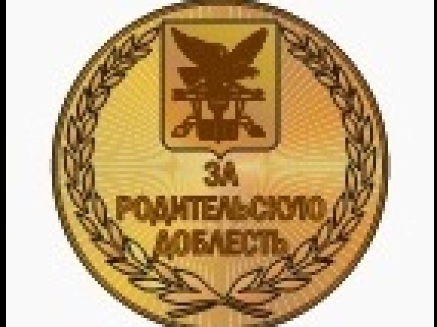 Награждение медалью «ЗА РОДИТЕЛЬСКУЮ ДОБЛЕСТЬ»