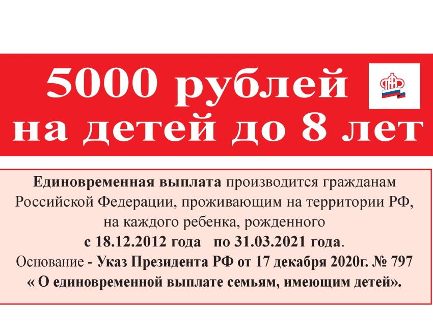 ПФР - 5000 рублей на детей до 8 лет