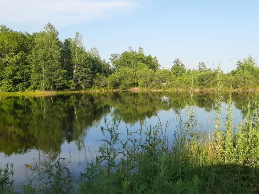 Специалисты Минприроды Забайкальского края не выявили нарушителей на территории «Ивано-Арахлейского» парка