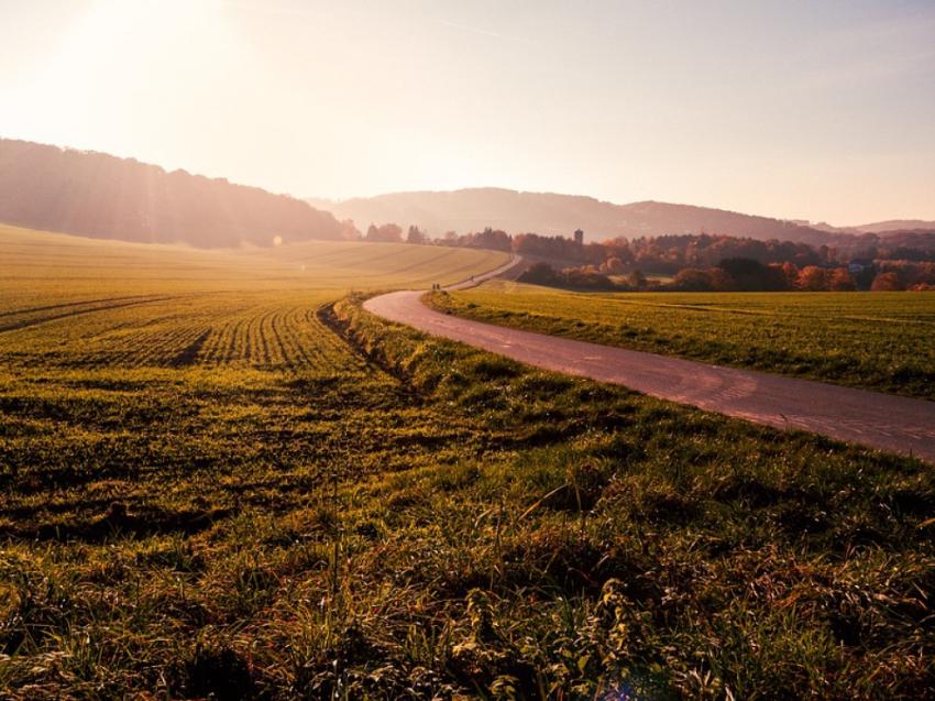 Все жители ДФО с 1 февраля смогут получить «Дальневосточный гектар» в Забайкалье