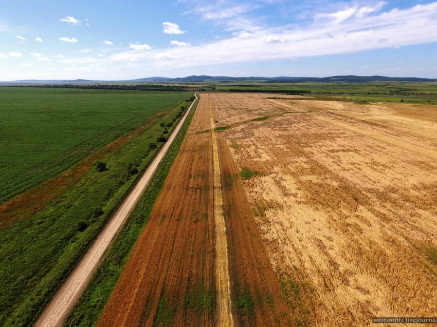 Жители ДФО подают заявки на «дальневосточный гектар» в Забайкалье