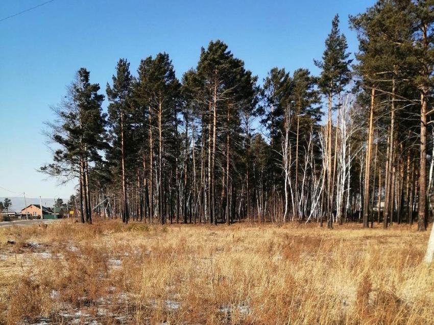 Забайкальцы стали получать разрешение на строительство на «дальневосточном гектаре»
