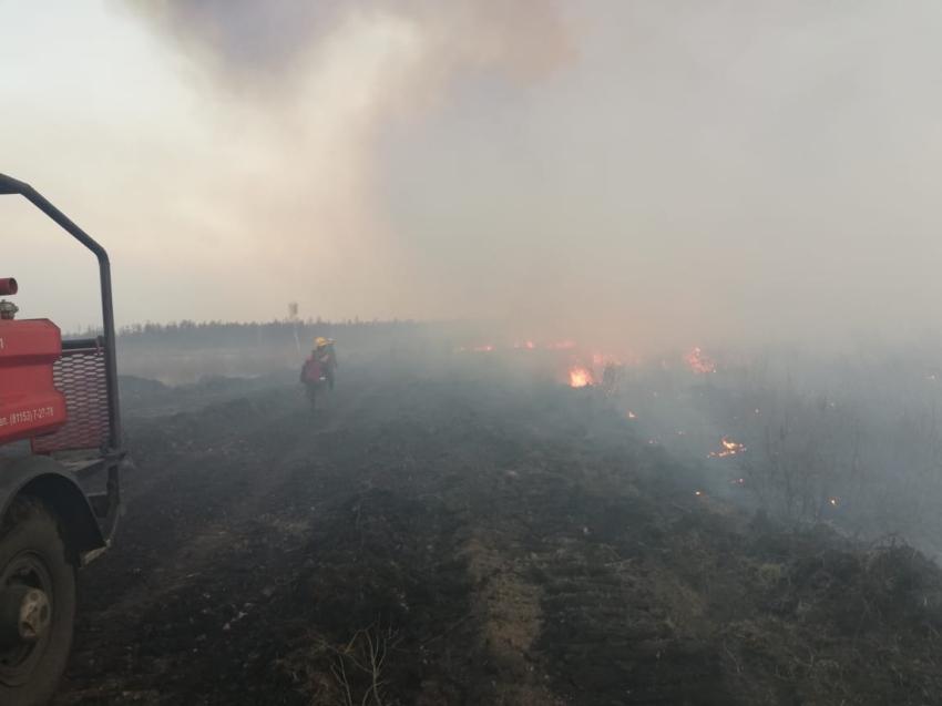 Минприроды Забайкалья:  Пожар действует в районе станции Лесная на землях Минобороны РФ