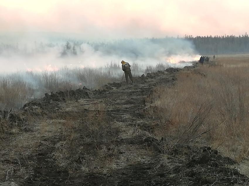 Четыре лесных пожара действует в Читинском районе