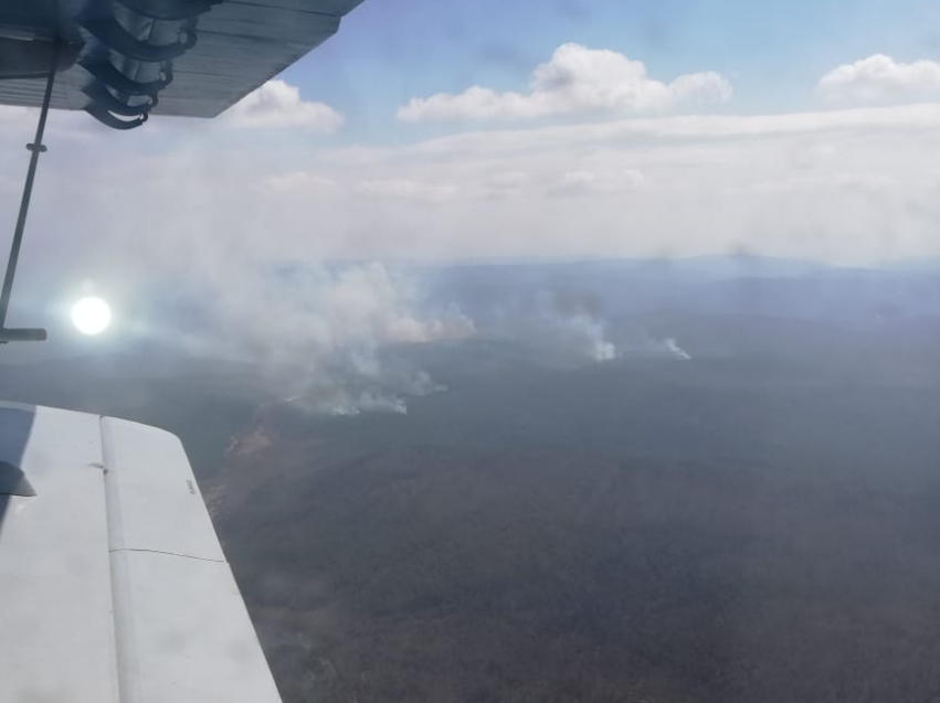 Лесопожарные формирования продолжают борьбу с лесными пожарами на территории края