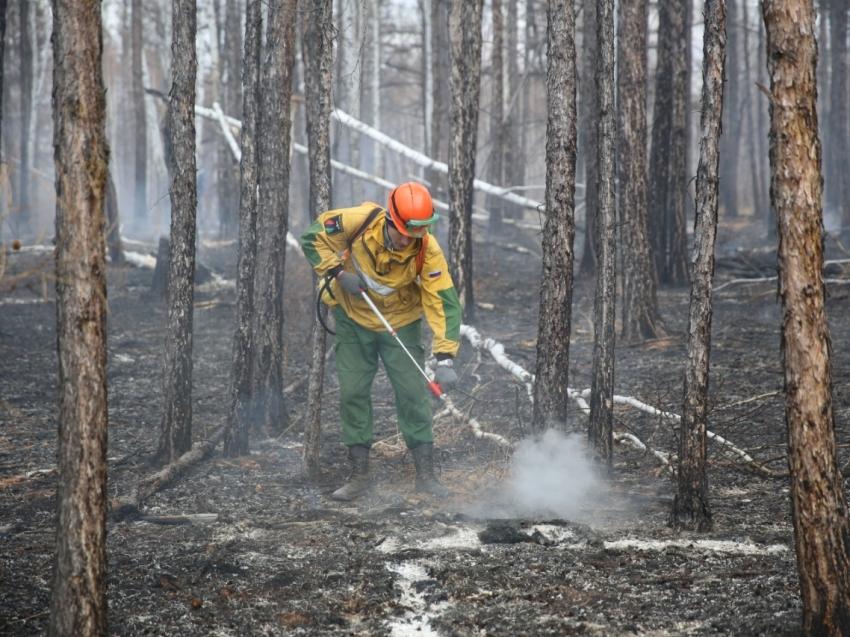 Глава МЧС России Евгений Зиничев прибыл в Забайкалье для решения вопросов прохождения пожароопасного сезона