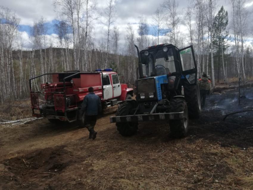 Четыре лесных пожара ликвидировано в Забайкальском крае