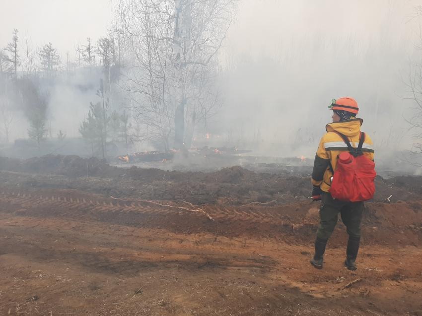 За прошедшие сутки ликвидировано 10 лесных пожаров