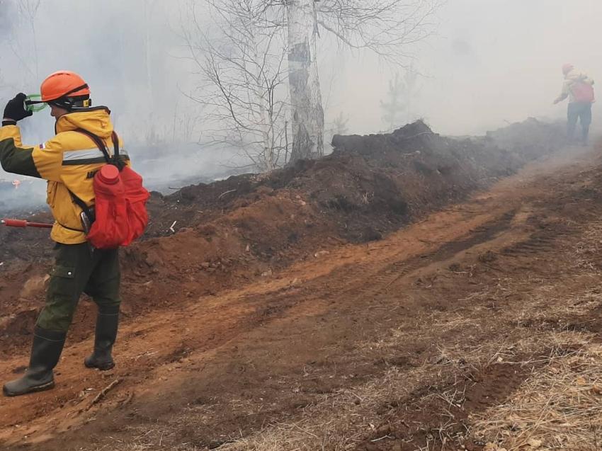 Лесопожарные формирования тушат лес в районе Гонготы