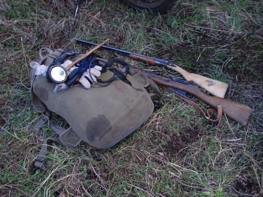 Незаконную добычу изюбра выявили в районе Забайкальского края