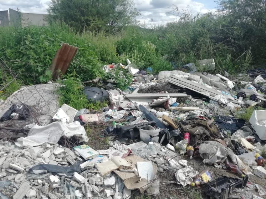 Несанкционированные свалки выявлены в садово-некоммерческих товариществах Читы