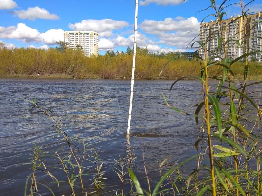Сергей Немков: Финансирование на защиту от паводков ежегодно увеличивается в Забайкалье