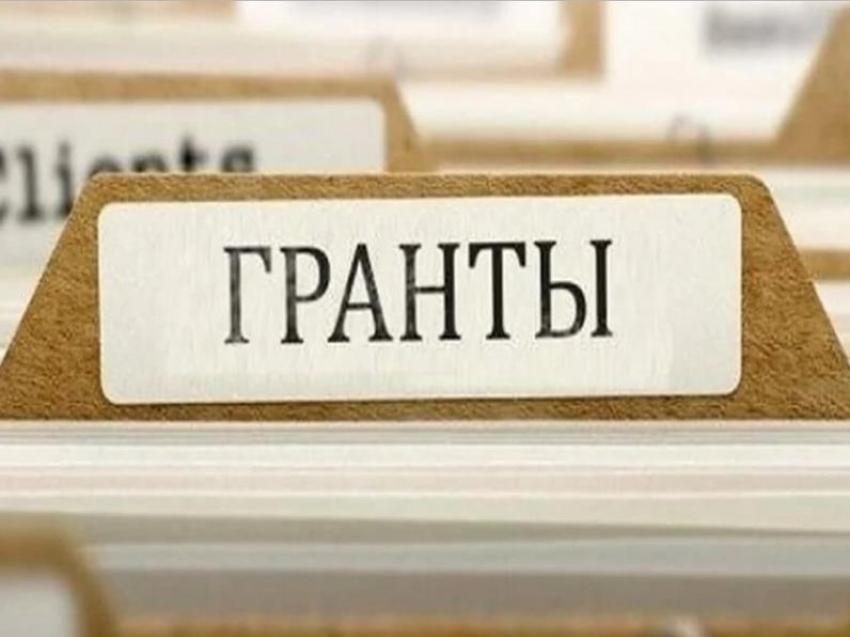 Второй конкурс грантов Президента Российской Федерации, направленных на развитие гражданского общества в 2021 году
