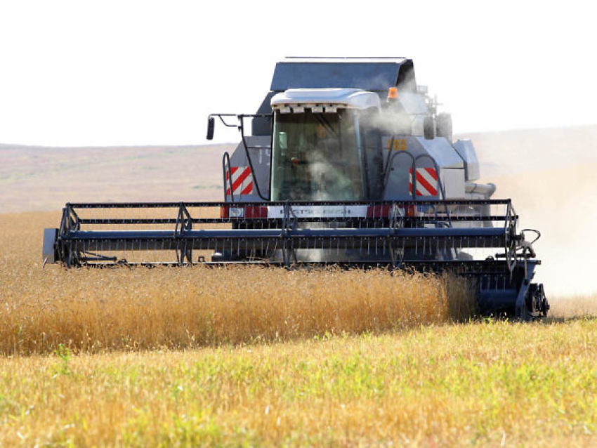 Денис Бочкарев: Программа модернизации сельского хозяйства востребована у аграриев