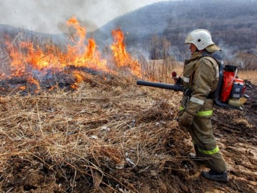 Минприроды: 23 апреля на территории Забайкальского края действуют шесть лесных пожаров