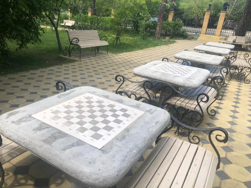 Летний проект по шахматам запустят в Чите