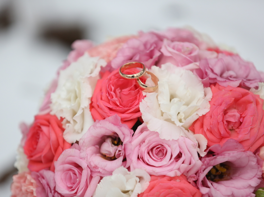 500 браков зарегистрировано в городском отделе ЗАГС Читы