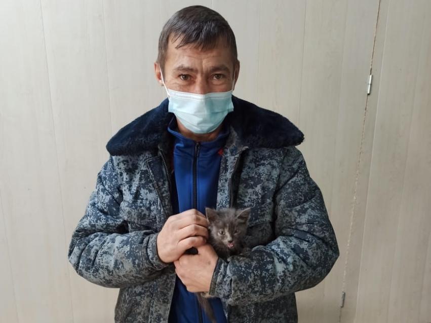 Сотрудники Шилкинской ветеринарной станции в Забайкалье спасли котёнка