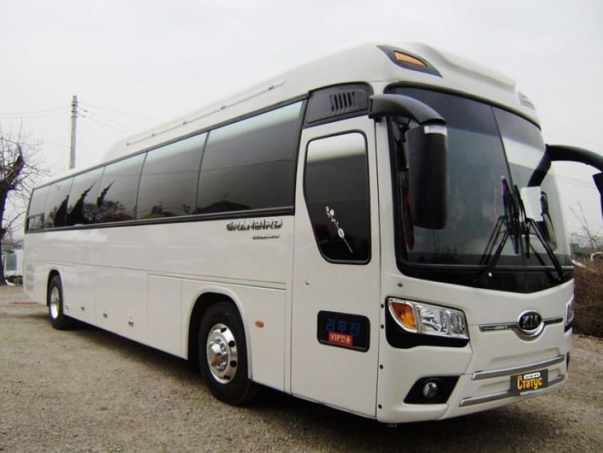 белый автобус марки киа фото этот