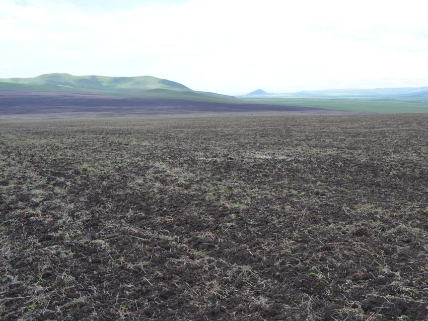 Забайкальские хозяйства подняли 18 тысяч гектаров залежных земель