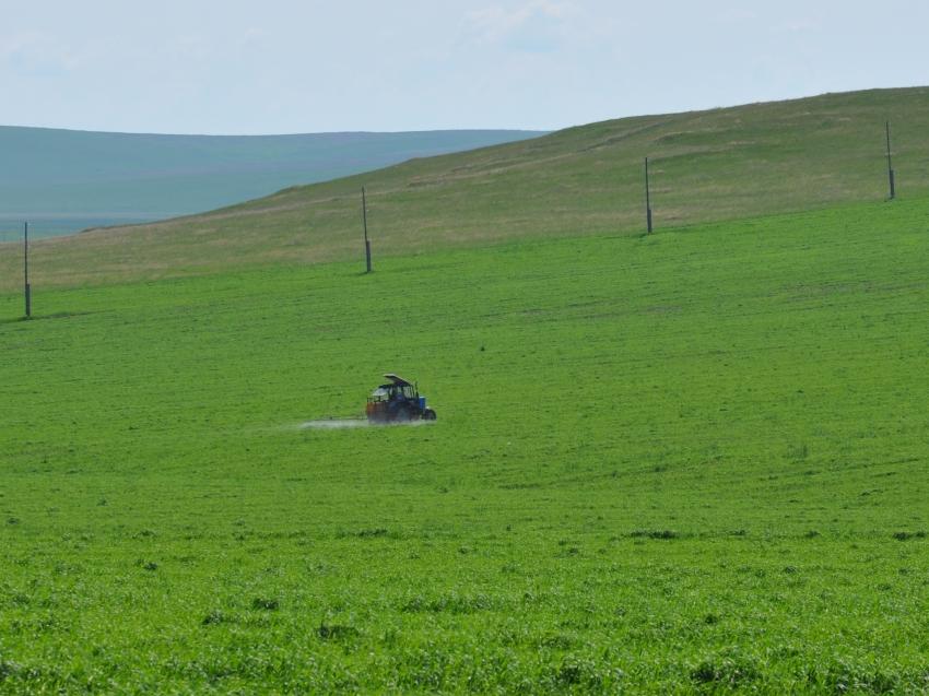 Забайкальские хозяйства за год почти в два раза увеличили работы по защите растений