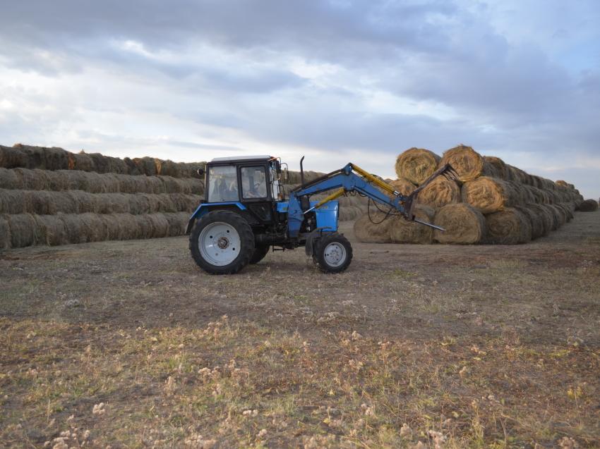 Аграрии трех районов Забайкалья выполнили планы по заготовке кормов