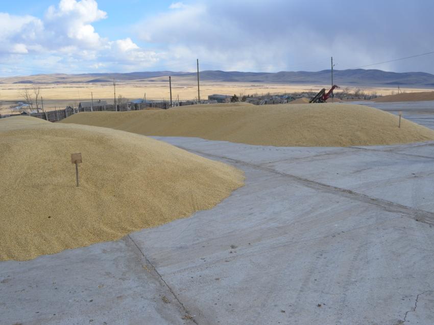 Подготовка к весенне-полевым работам началась в Забайкальском крае