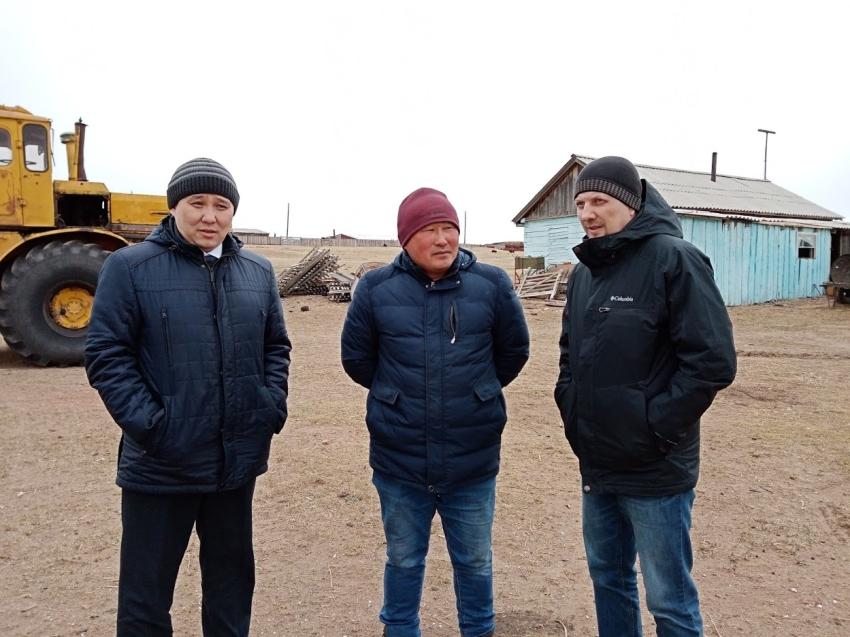 Семеноводческое хозяйство намерены создать фермеры из Могойтуйского района