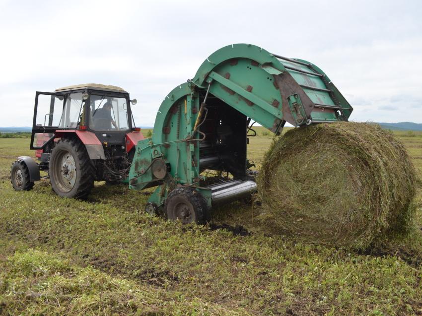 Хозяйства четырех районов Забайкалья приступили к заготовке кормов