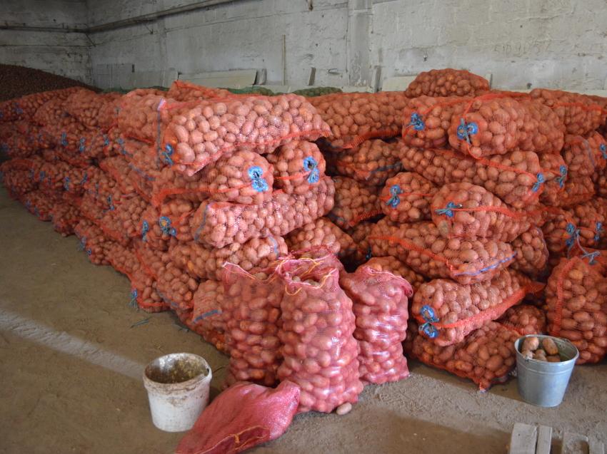 Жителям пострадавших от паводка районов Забайкалья начали доставлять овощи