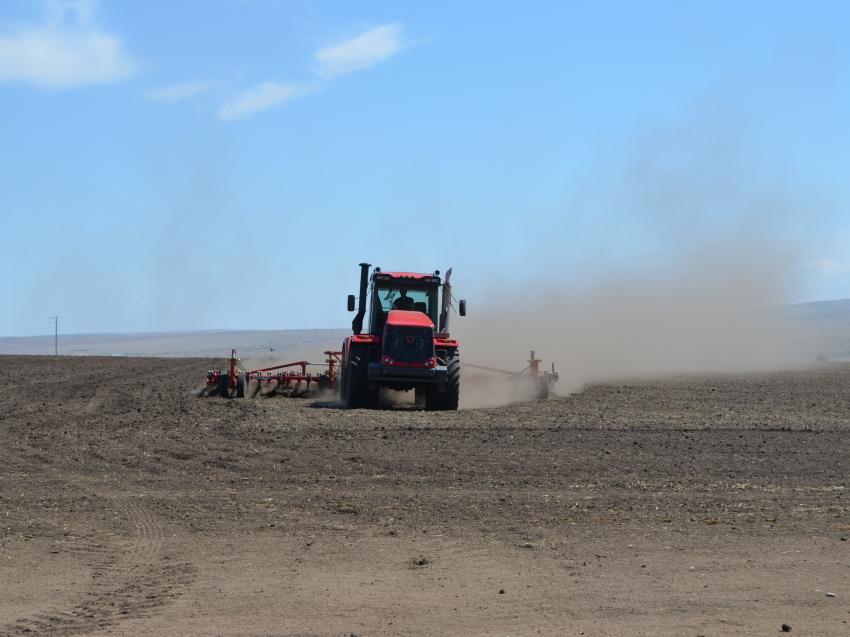 Забайкальские аграрии ввели в оборот 21,5 тысячи гектаров залежных земель