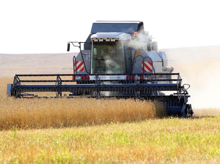 Аграрии Забайкалья приступили к уборке сельскохозяйственных культур