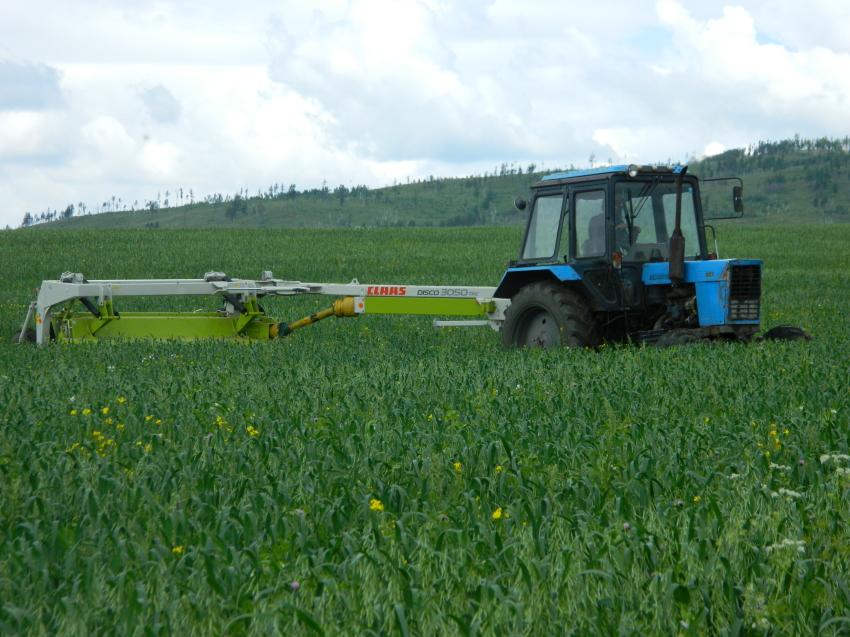 Победителями конкурса «Агростартап» стали хозяйства из девяти районов Забайкалья