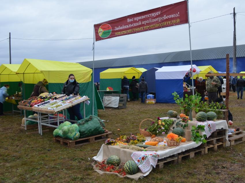 Ярмарка сельхозпродукции и конноспортивные соревнования пройдут в Чите