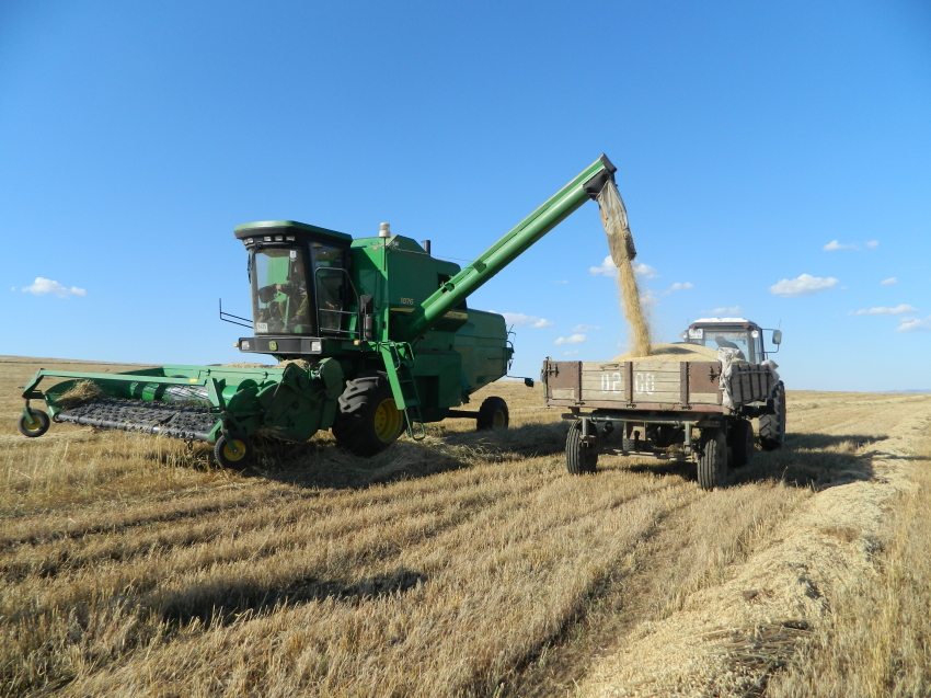 Денис Бочкарев поздравил аграриев Забайкалья с Днем работников сельского хозяйства