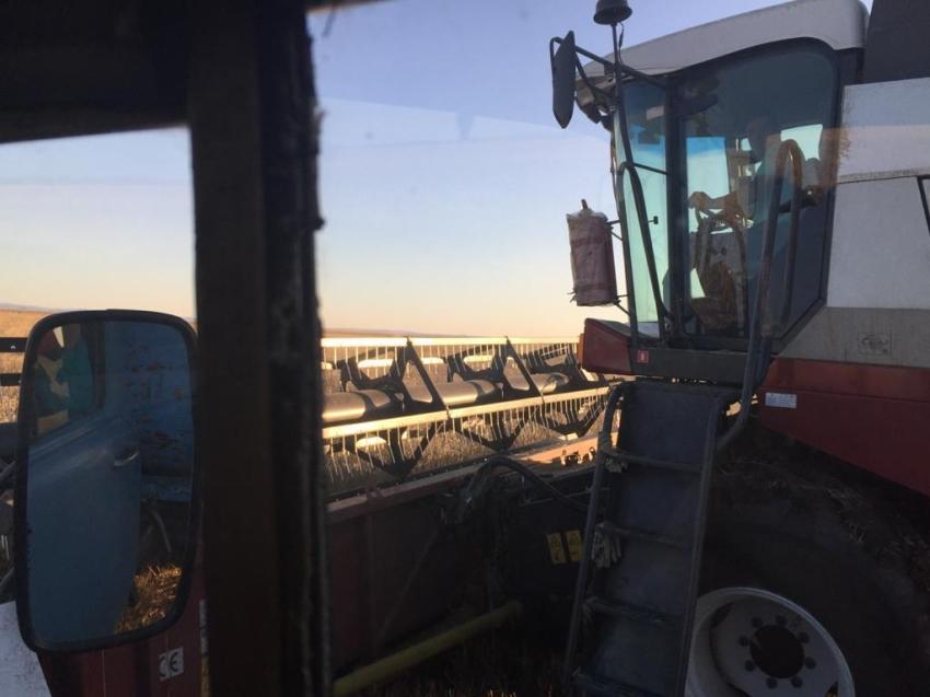 Предприятие Чернышевского района ускорило сбор урожая благодаря господдержке