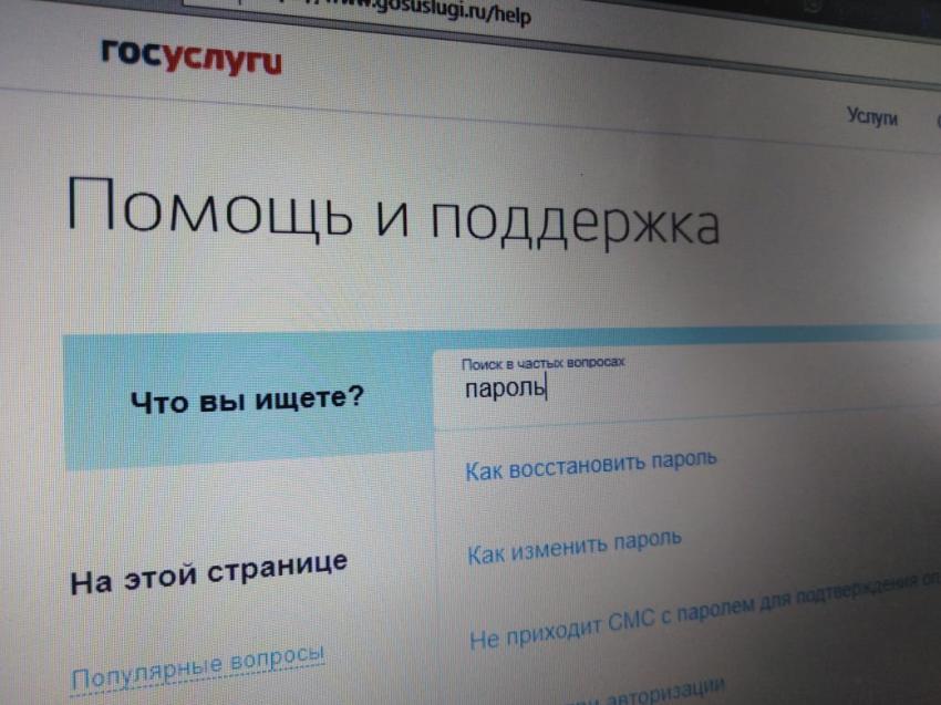 IT-специалисты: Восстановить пароль к Госуслугам забайкальцы могут легко