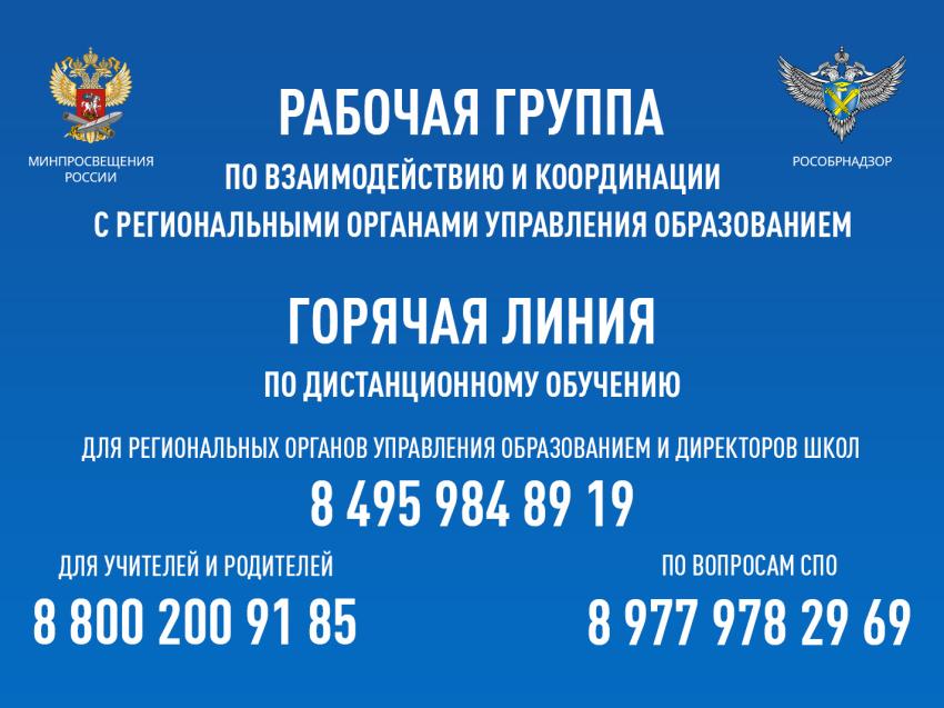 Начала работу горячая линия при Минпросвещения России для образовательных организаций, реализующих программы СПО