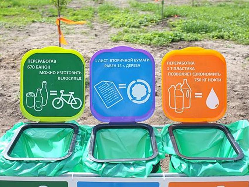 Более 23 тонн макулатуры собрали участники конкурса «Сдаем мусор на переработку»
