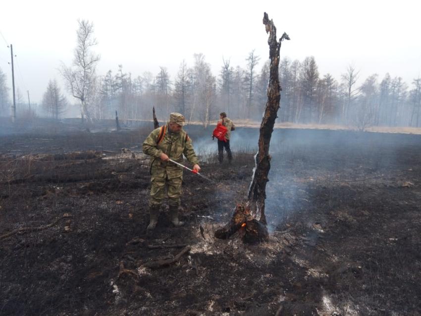 Сотрудники Дирекции природного парка «Ивано-Арахлейский» и отдела ООПТ ликвидировали лесной пожар