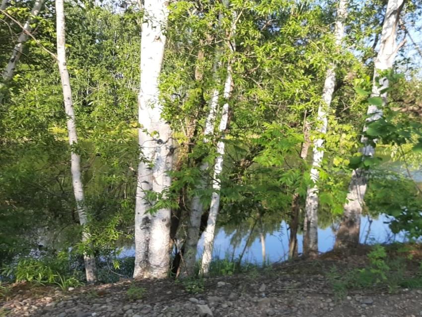 На публичных обсуждениях правоприменительной практики в Минприроды Забайкалья рассматривались результаты работы регионального государственного экологического надзора при осуществлении хозяйственной и иной деятельности