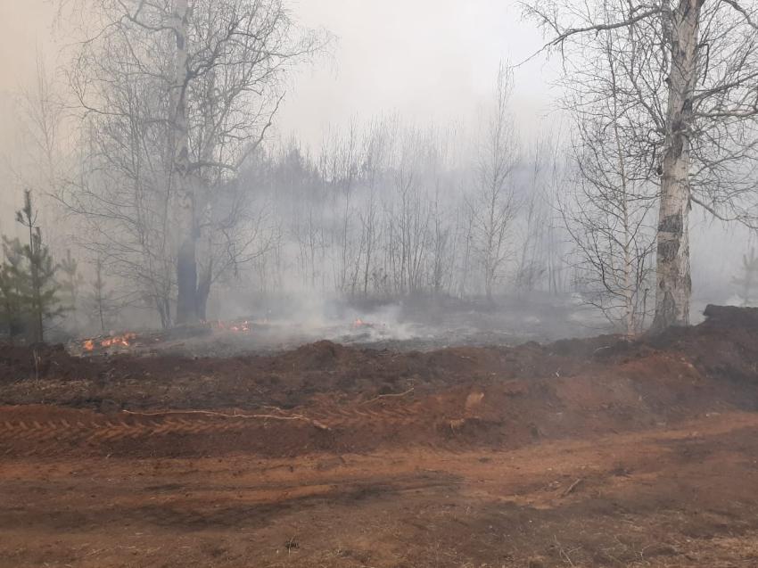 В Александрово-Заводском районе Забайкалья введен особый противопожарный режим