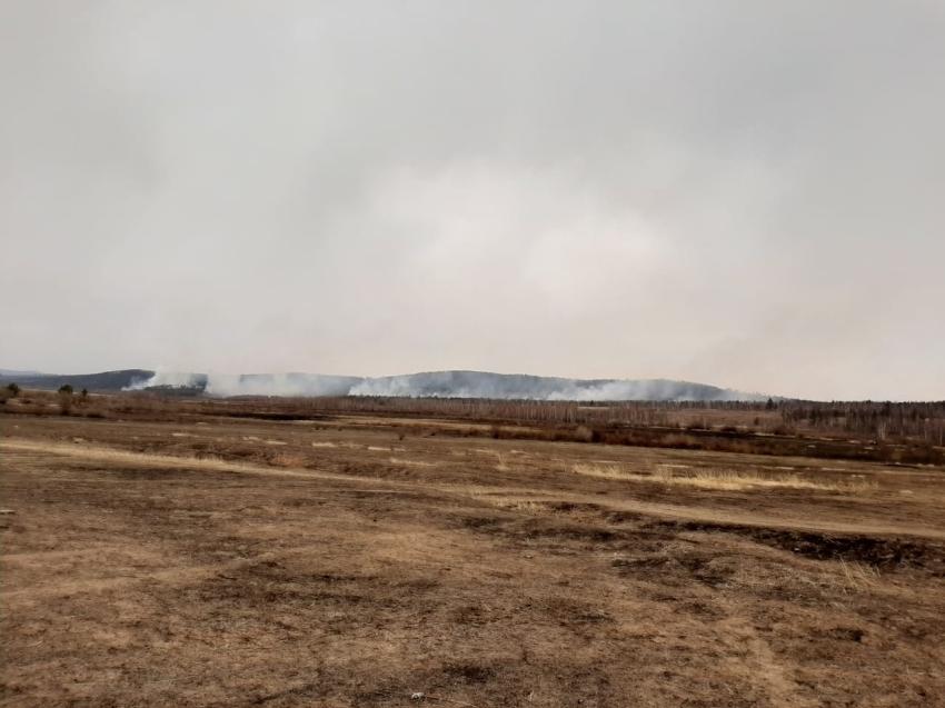 Минприроды края: на 6 апреля было ликвидировано шесть пожаров