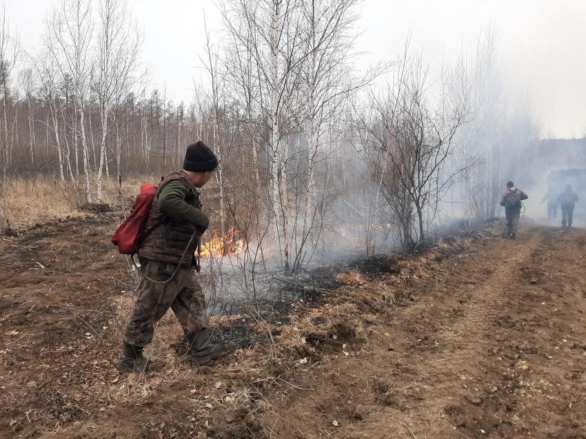 В Читинском районе Забайкалья локализован лесной пожар