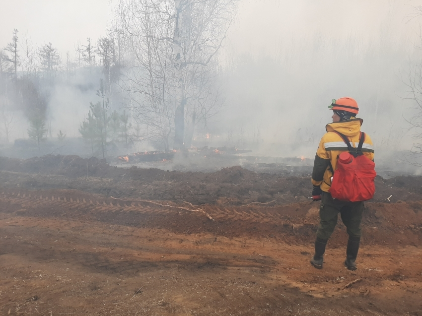 В поселке Лесной Городок Забайкалья ликвидирован лесной пожар