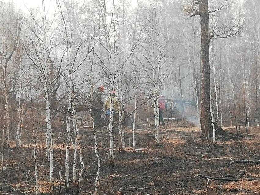 В Улётовском районе Забайкалья ликвидирован лесной пожар