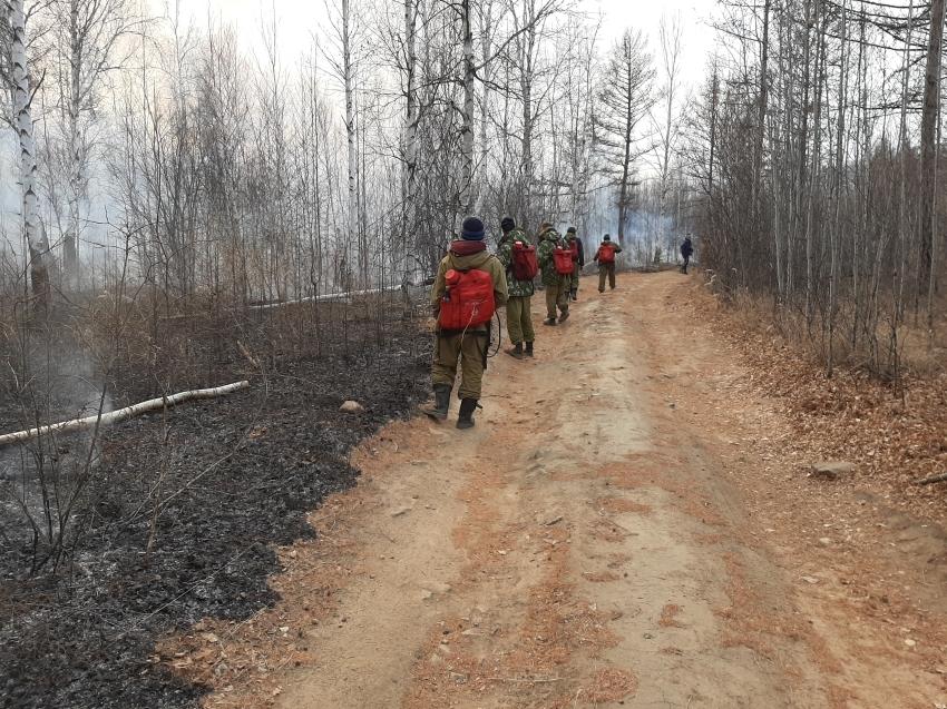 Минприроды: На территории Забайкалья ликвидировано и локализовано четыре лесных пожара