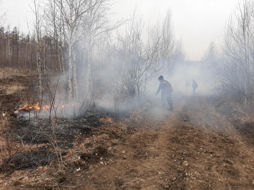 Лесопожарные формирования Забайкальского края тушат пожар рядом с Читой