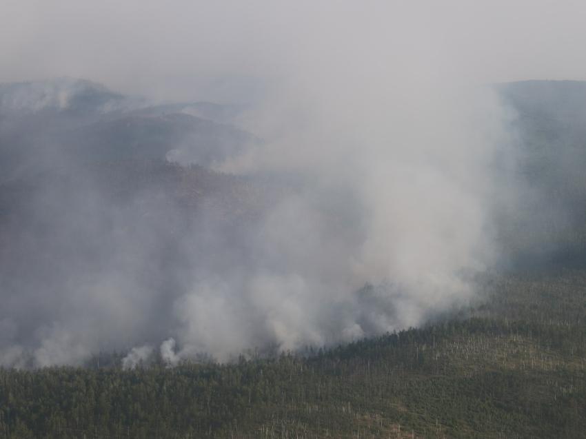 Лесопожарные формирования Забайкальского края ликвидировали пожар рядом с Читой
